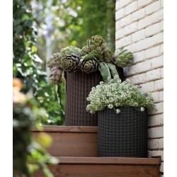 Kieliszki BERRETTI do wina białego 250 ml - Krosno